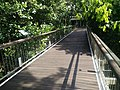 Putrajaya Botanical Garden in Malaysia 23.jpg