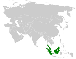 Pycnonotus erythropthalmos distribution map.png