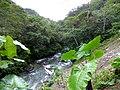 Río Claro (13960995917).jpg