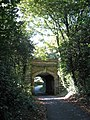 Railway Bridge, North Downs Way - geograph.org.uk - 1526567.jpg