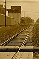 Railway line in Rayne LA.jpg