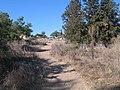 Ramat-ha-Nadiv-spring-trail-1985.jpg