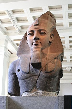 British Museum Department of Ancient Egypt and Sudan - Bust of Ramses II in British Museum