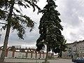 Red Place - panoramio.jpg