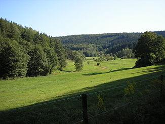 Reichenbachtal near Roda