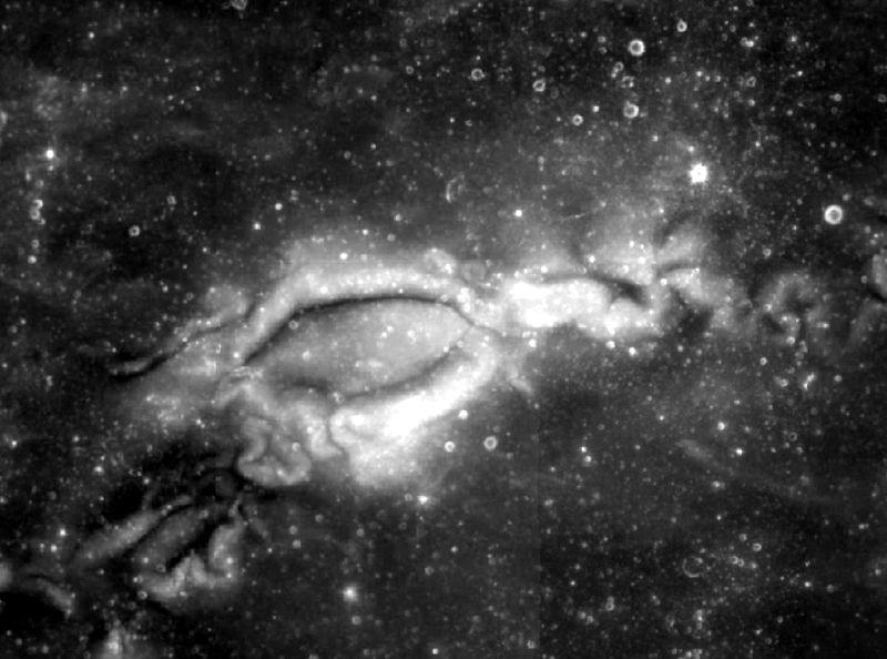 Reiner-gamma-clem1.jpg