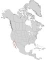 Rhus kearneyi range map 0.png