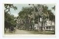 Ridgewood Avenue, Daytona, Fla (NYPL b12647398-67614).tiff