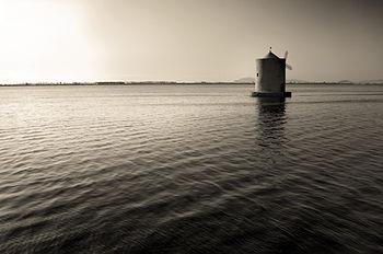 Riserva naturale Laguna di Orbetello di Ponente-2.jpg