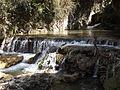 Rishikesh harikempty fallsdwar (402).JPG