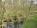 River Arrow, near Huntington Park - geograph.org.uk - 377465.jpg