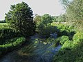 River Avon - geograph.org.uk - 203976.jpg