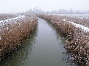 River Blyth, Suffolk - The River Blyth near Wenhaston.