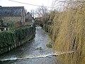 River Brue, Bruton - geograph.org.uk - 666050.jpg