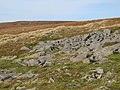 Rock outcrop below Fendrith Hill - geograph.org.uk - 615225.jpg