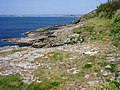Rocks at Stackhouse Cove - geograph.org.uk - 186451.jpg