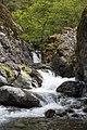 Rogue River (17419390368).jpg