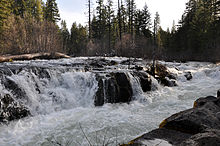A river cascades over a rock ledge about as tall as a person and rushes rapidly downstream through the woods.