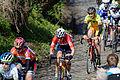 Ronde van Vlaanderen 2015 - Oude Kwaremont (17054066861).jpg