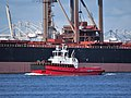 Rotterdam (tugboat, 2017) IMO 9816658 Calandkanaal.JPG