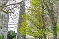 Round tower at St. Columba's Church in Swords, Dublin -115250 (25960270883).jpg