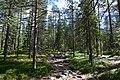 Rovaniemi, Finland (18) (36547100311).jpg