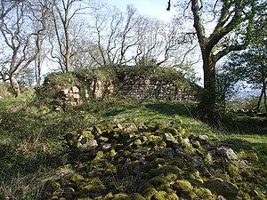 Morgraig Castle - Image: Ruins of Castell Morgraig