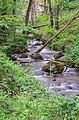 Ruisseau des Palanges (10).jpg