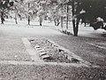 Südpark Erfurt Kriegsgräberstätte früher.JPG