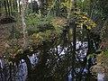 Saint-Avé - ruisseau de Lihuanten (03).jpg
