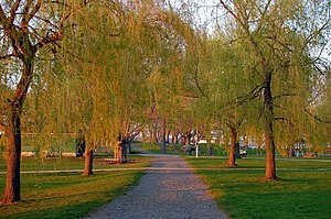 Salem Willows - Image: Salem Willows Path
