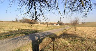 Weingarten (Baden) - Image: Sallenbusch