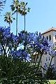 Santa Clara, CA USA - Santa Clara University, Mission Santa Clara de Asis - panoramio (21).jpg