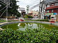 SantoTomas,Batangasjf0621 09.JPG