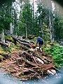 Sarek Lappland.jpg