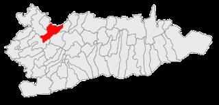 Sărulești, Călărași Commune in Călărași, Romania