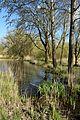 Schleswig-Holstein, Lunden, Landschaftsschutzgebiet und Naturerlebnisraum NIK 5813.jpg