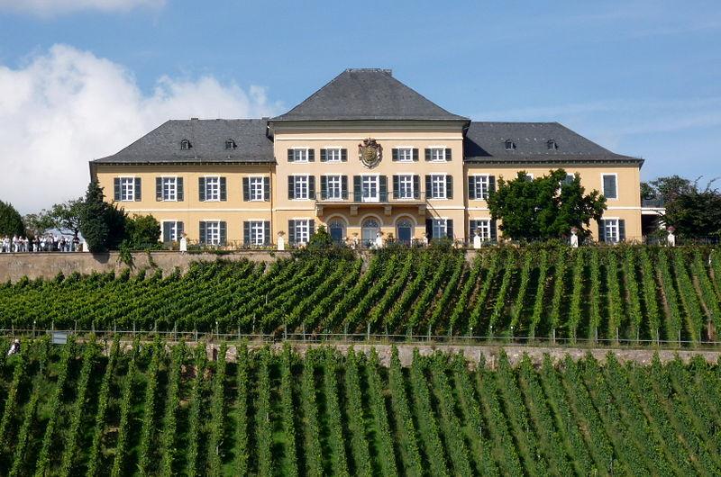 Лучшие места Германии для дегустации вин