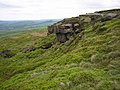 Scope Moss - geograph.org.uk - 171644.jpg