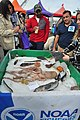 Seattle - 2018 Fishermen's Fall Festival - 23 - 'Bottom Fish of Alaska'.jpg