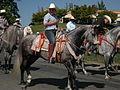 Seattle - Fiestas Patrias Parade 2008 - horses 15.jpg