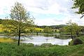 Sedlec-Prčice, Prostřední pond.jpg