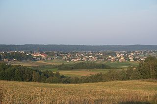 Elektrėnai Municipality Municipality in Dzūkija, Lithuania