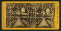 Senter House, from garden, Centre Harbor, N.H, from Robert N. Dennis collection of stereoscopic views.png