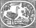 Sentimental fables. Designed chiefly for the use of the ladies. Fleuron T078514-3.png