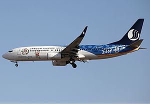 2009 National Games of China - Shandong Airlines Boeing 737-800 in a livery promoting the Games.