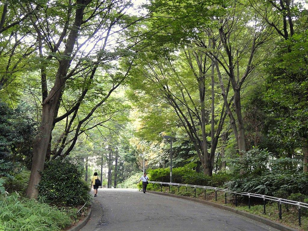 Shinjuku Central Park - DSC04696