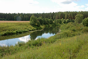 Moscow Oblast - The Shosha River near the selo of Mikulino