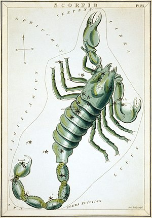 Scorpius - Scorpius as depicted in Urania's Mirror, a set of constellation cards published in London c.1825.