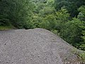 Silverbrook Valley by Alan Hunt.jpg